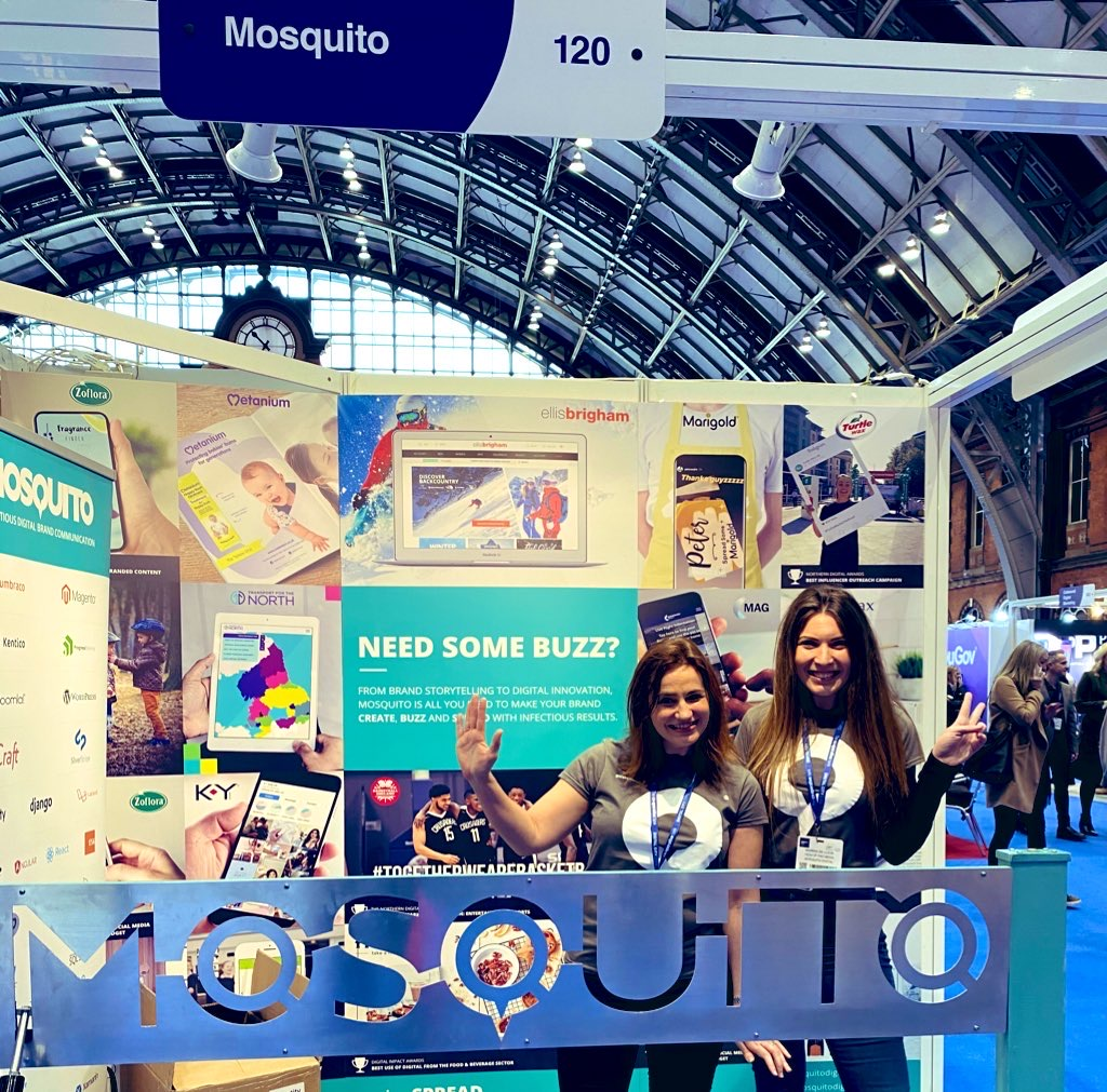 Team Mosquito at Digital City Festival Expo 2020
